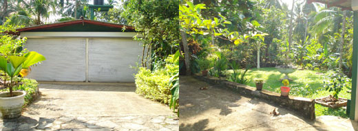 Sri lanka property sales businesses